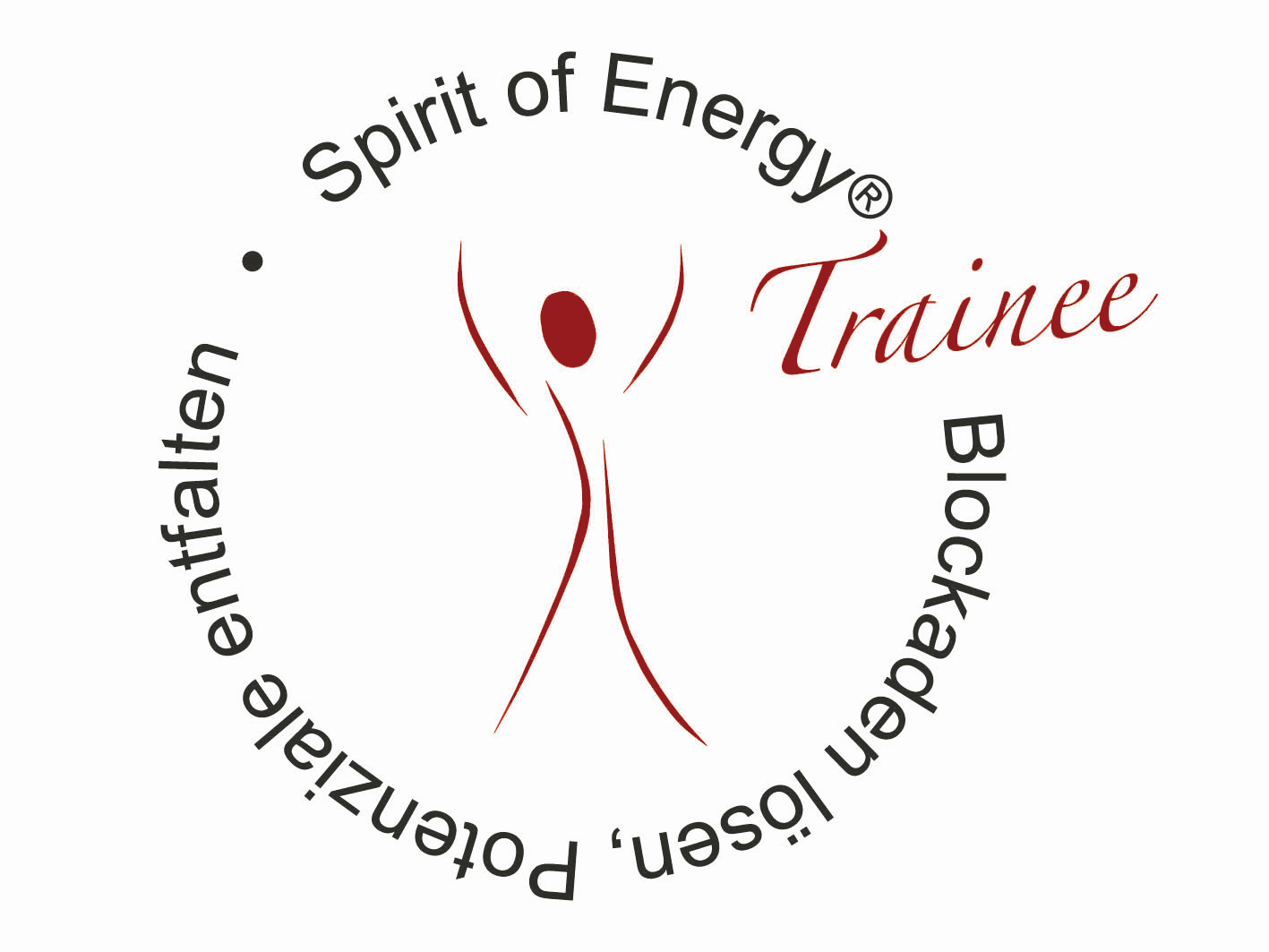 Spirit of Energy-Trainee